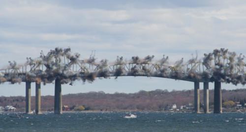 Bridge-1.sized-770x415xc