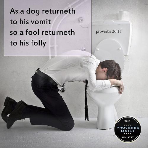 dog-returns-to-vomit