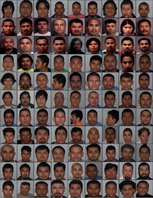 nc_illegals-792x1024