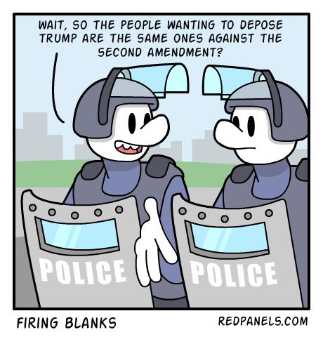 rioters-2nd-amendment-comic