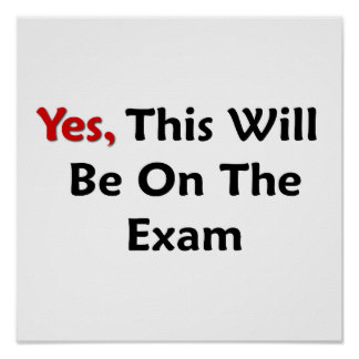 yes_this_will_be_on_the_exam_poster-rf608181dbc7d4cc086d73564468261cf_w2j_8byvr_324