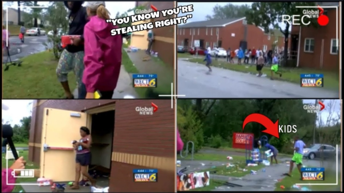 Fake Reporters Stand in Ponds & Lean Into The Wind; Real Reporters Confront Black Looters(Video)