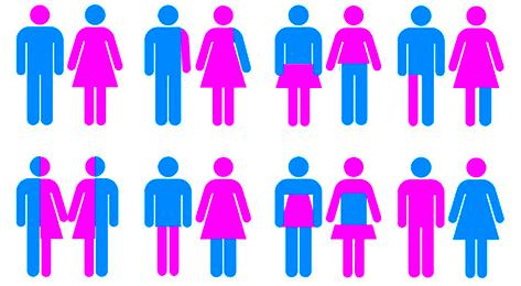 Thinking about transgenderism